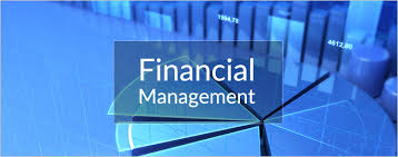 Financial Management Solutions